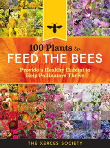Feed the Bees Book Review