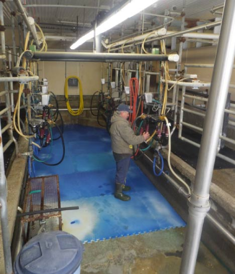 The milking parlor on Fournier Farm can handle 8 cows at once.