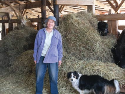 Janet Clark and her herding dog Emma in the barn at Steady Lane Farm. Peering over the hay pile behind Janet is Fred the bull.