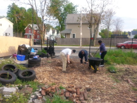 Clean up day in Gardening the Community's Central Street Garden