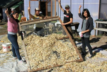Youth cleaning beans at Pie Ranch