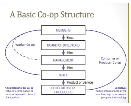 Basic Co-op Governance