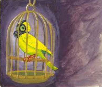 Canary in cage