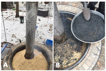 Figure 2: (A) Rice husk smoker and (B) smoked rice husks.