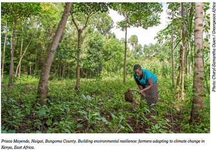 Food Sovereignty Farmers Adapting to climate change