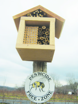 homemade Mason Bee nest box