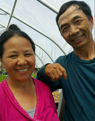 Sanctuary Herbs of Providence at Urban Edge by Hmong farmers
