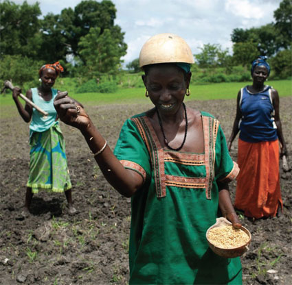 The Real Seed Producers image African women sowing
