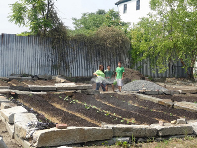 Green Team waters the crops at the farm
