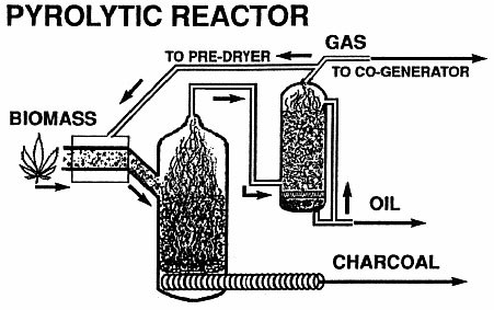 Reactor pyrolyzes biomass yielding charcoal, from which heat has driven off volatile gases. Some gases are condensed for oil, some used to predry the biomass or burned elsewhere.