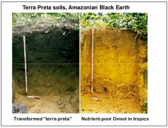 ompare terra preta with normal tropical soil From presentation by Steve Diver at April 2013 Resilient Farmer workshop http://www.slideshare.net/MauraMcDW/emimo-kcsa-resilient-farmer-april-2013