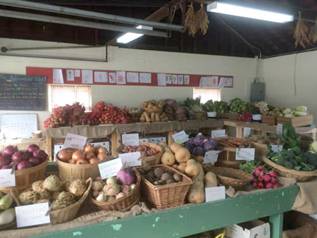 photo by Laura Sackton First Root produce in the farm stand, organized into units of a vegetable